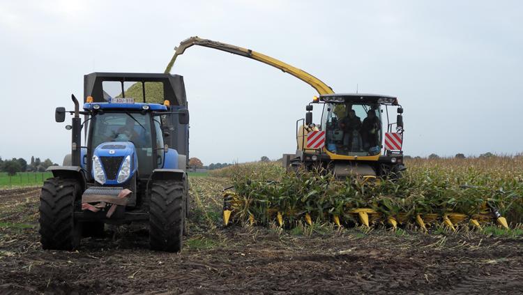 Traktor en graan